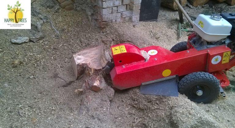 Baumstumpf ausfräsen